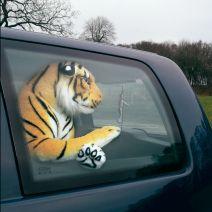 Tiger i bil