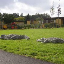 Två krokodiler